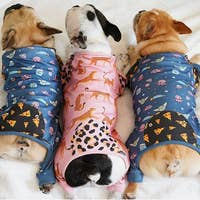 The Child Pet Pajamas