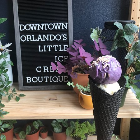 Spotlight: The Greenery Creamery