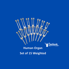Human Organ Tuning Forks Set of 15