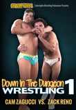 Down in The Dungeon 1 DVD