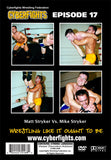 CYBERFIGHT 17 - MATT STRYKER VS MIKE STRYKER (DVD)