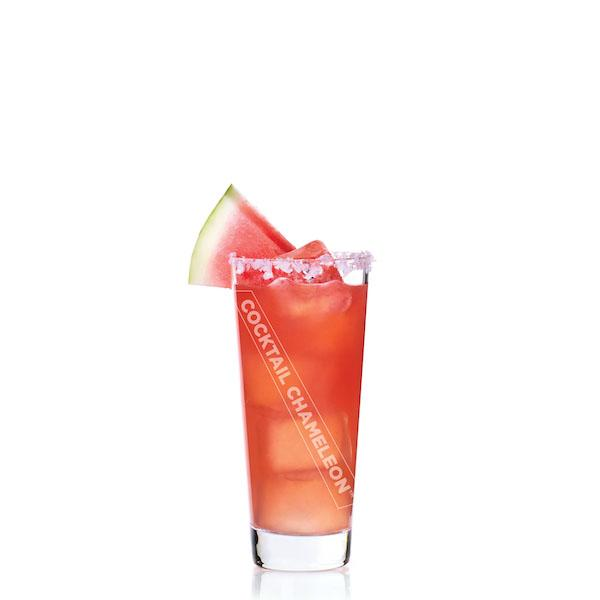 Limited Edition Cocktail Portrait: Watermelon Margarita watermarked image