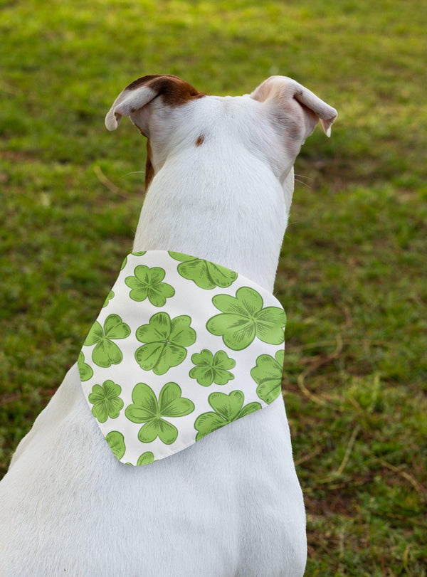 Clover Pet Bandana - Original Family Shop