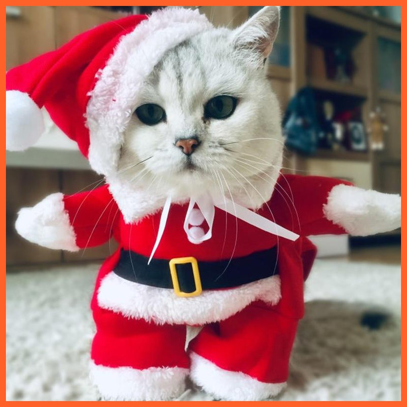 Winter Christmas Pet Cat Costumes