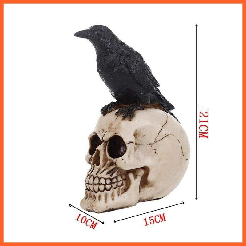 Skull with Sitting Crow Statue