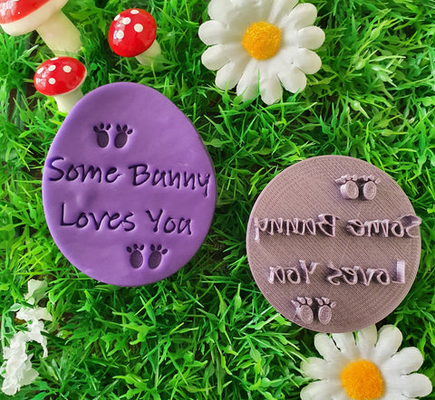 Easter Fondant Stamp some bunny loves you | Cookie Cutter Shop Australia