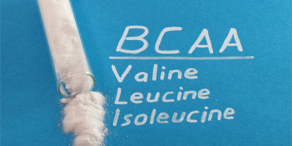 BCAAs: What They Are And How They Help Your Body