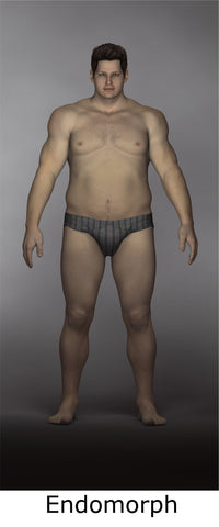 What Is An Endomorph