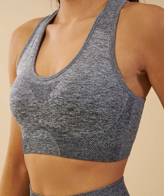 Sports Ombre Seamless Yoga Top - yogaluga