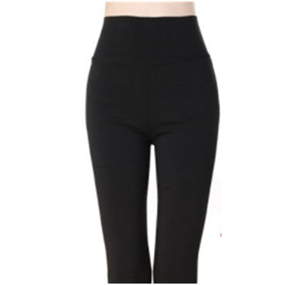 Women Candy Leggings Plus Size