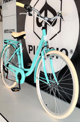 RB Diana City Bike TW 28""