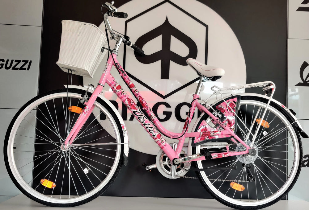 RB Visitor Fashion Garden City Bike RR 28""