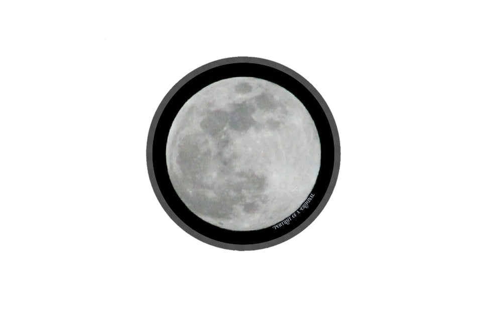 Moon vinyl sticker