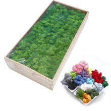 Load image into Gallery viewer, 20G Natural Moss Artificial Plant Eternal Moss Home Garden Decoration DIY Flower Material Micro Landscape Accessories