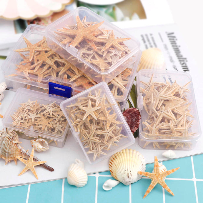 1 Box Natural Starfish Seashell Beach Craft Natural Sea Stars DIY Beach Wedding Decoration Crafts Home Decor Epoxy 1-5cm