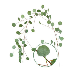 DIY  Silk Hanging Eucalyptus Garland Wedding Party Simulation Wicker Leaves Vine Decorations