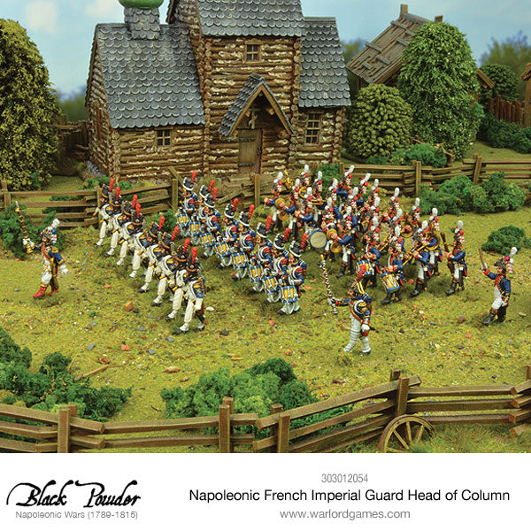 napoleonic french imperial guard head of column warlord games