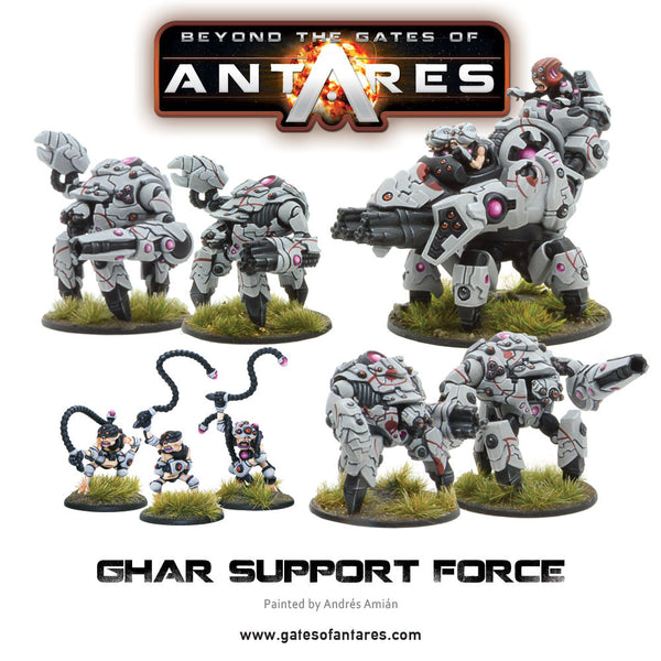 Ghar Support Force