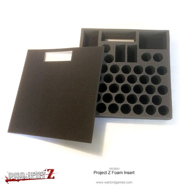 Project Z Foam Insert