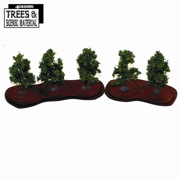 5x Young Orchard Trees