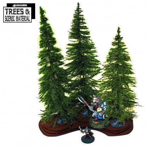3 x Mature Fir Trees