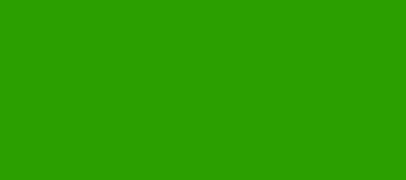 Model Colour 833 - German Camo Bright Green