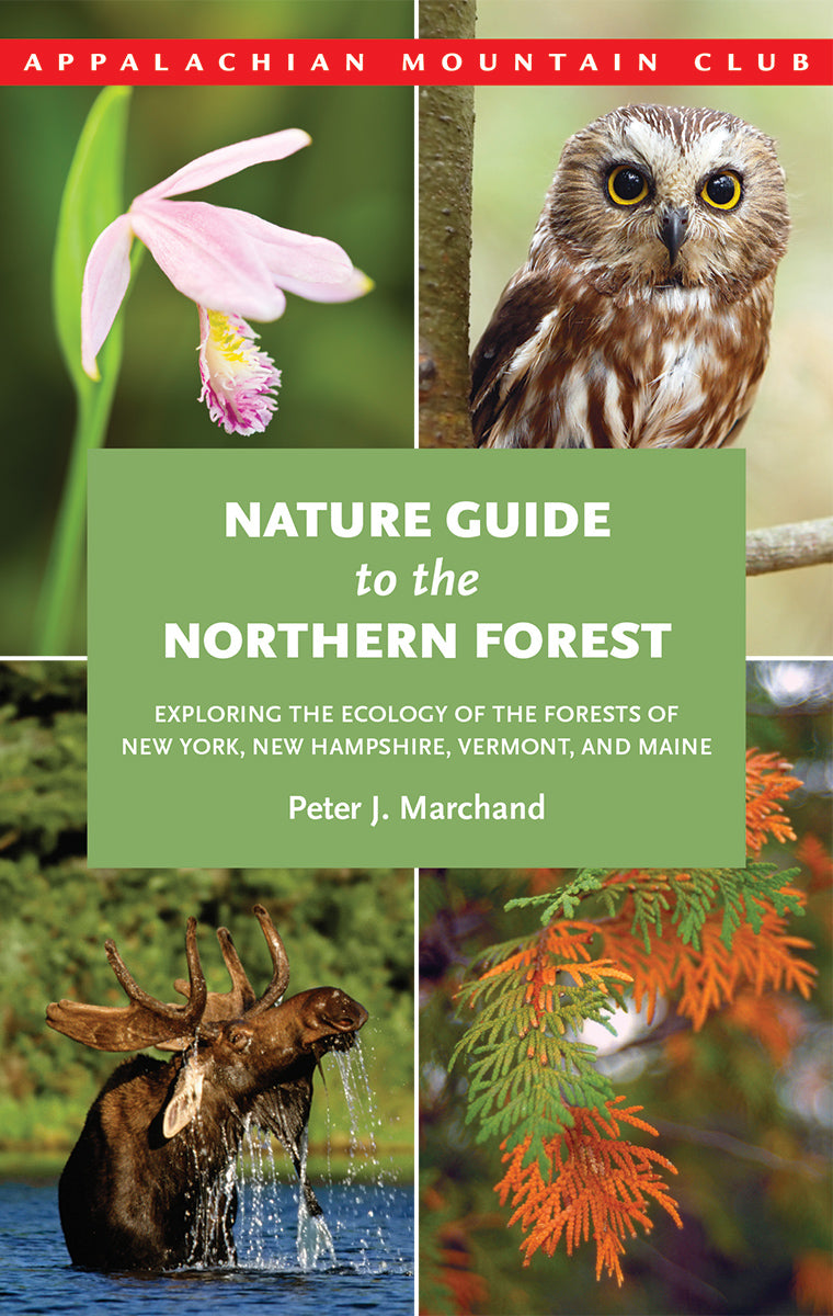 AMC Nature Guide to the Northern Forest