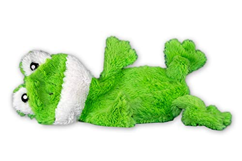 FGA MARKETPLACE Frog Flat NO Stuffing NO Squeak Plush Dog Toy 21""