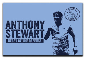 Anthony Stewart Stretched Canvas Print