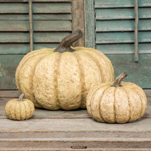 Load image into Gallery viewer, Pumpkins