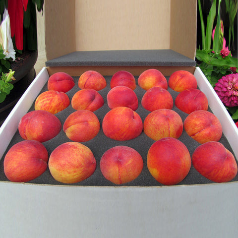 Fresh Peach Gift Box