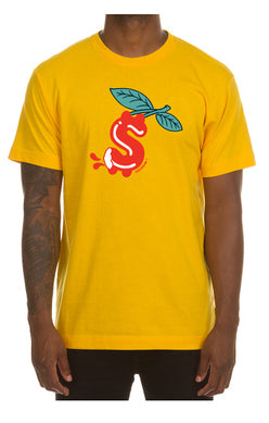 Icecream man ss tee