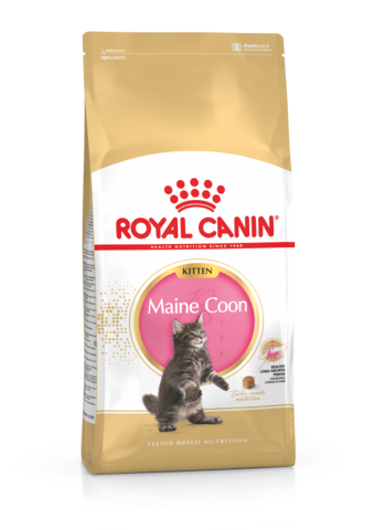 Royal Canin -Kitten -  Maine Coon - Woofworths Premium Online Pet Supplies