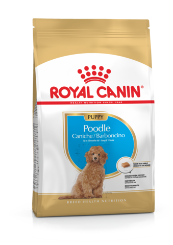 Royal Canin - Poodle - Woofworths Premium Online Pet Supplies