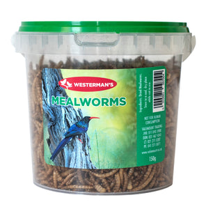 Mealworms (150g tub) - Woofworths Premium Online Pet Supplies