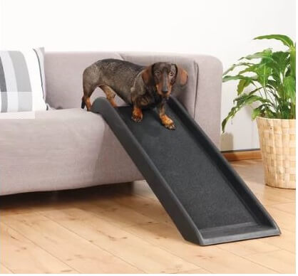 Single Plastic Pet Ramp