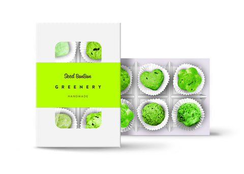 Seed Bonbon - Greenery Box