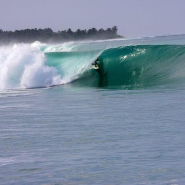 Macaronis Surf Resort - Indonesia / Mentawais - Sumatra