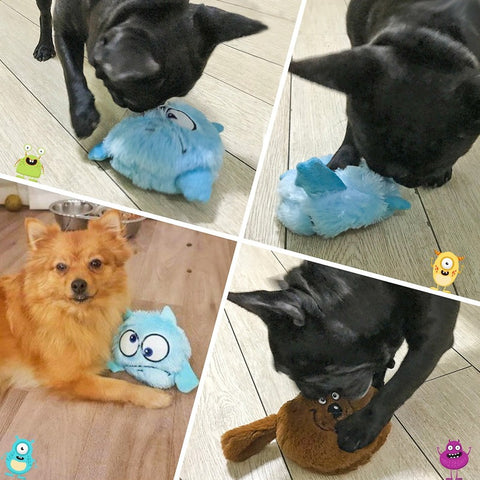 motion activated dog toy