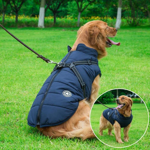Waterproof Dog Jacket with Harness