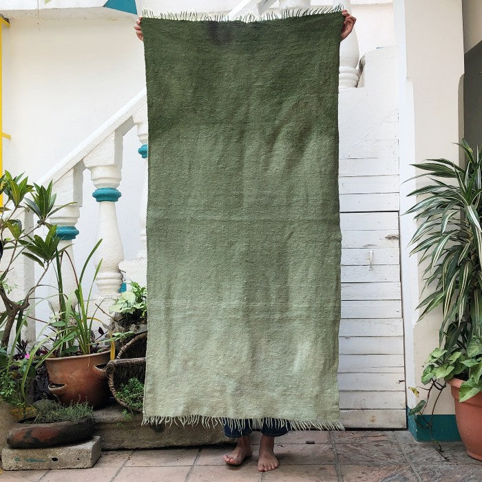 Medium Wool Rug in Basil Gradient