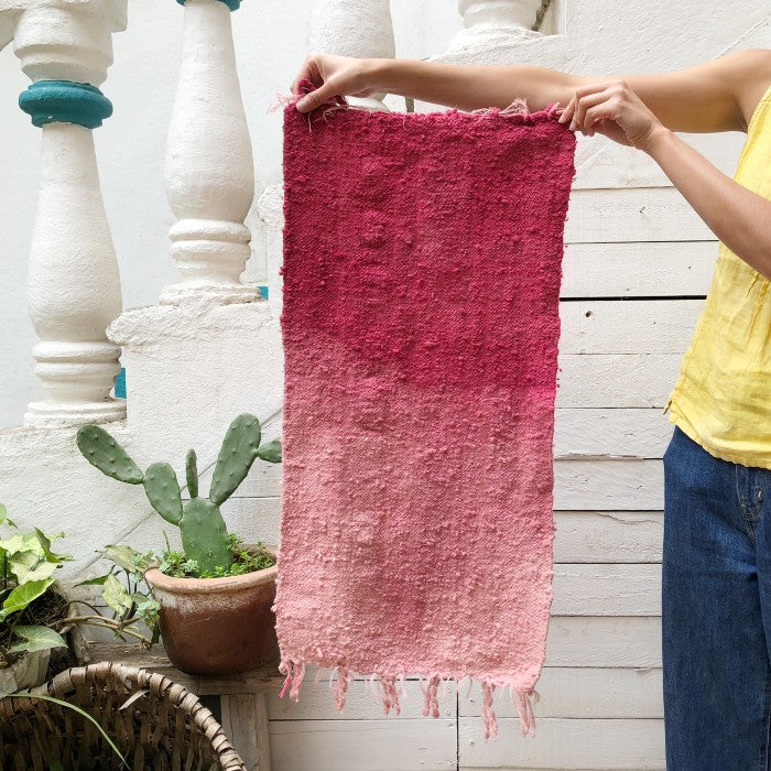 Small Wool Rug in Cochineal Gradient 2