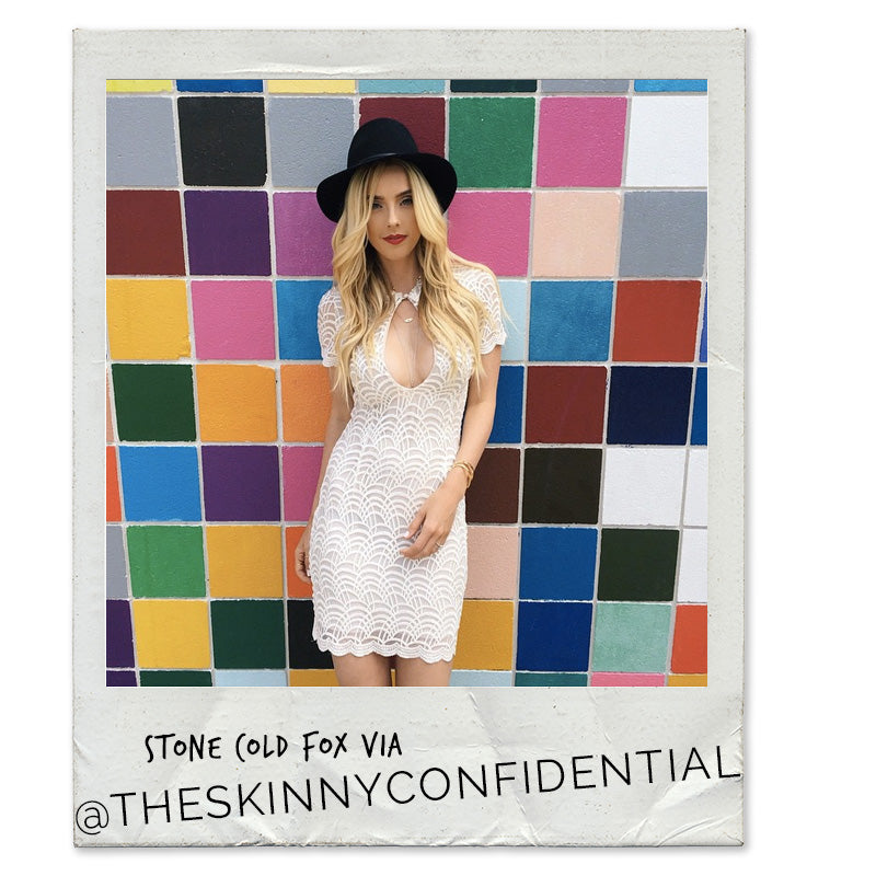 THe Skinny Confidential, Lauryn Evarts, Stone Cold Fox Dress