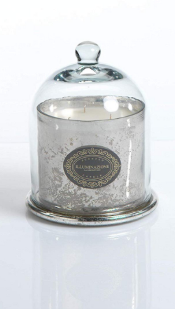 Zodax french red currant scented candle with silver jar and clear dome cover