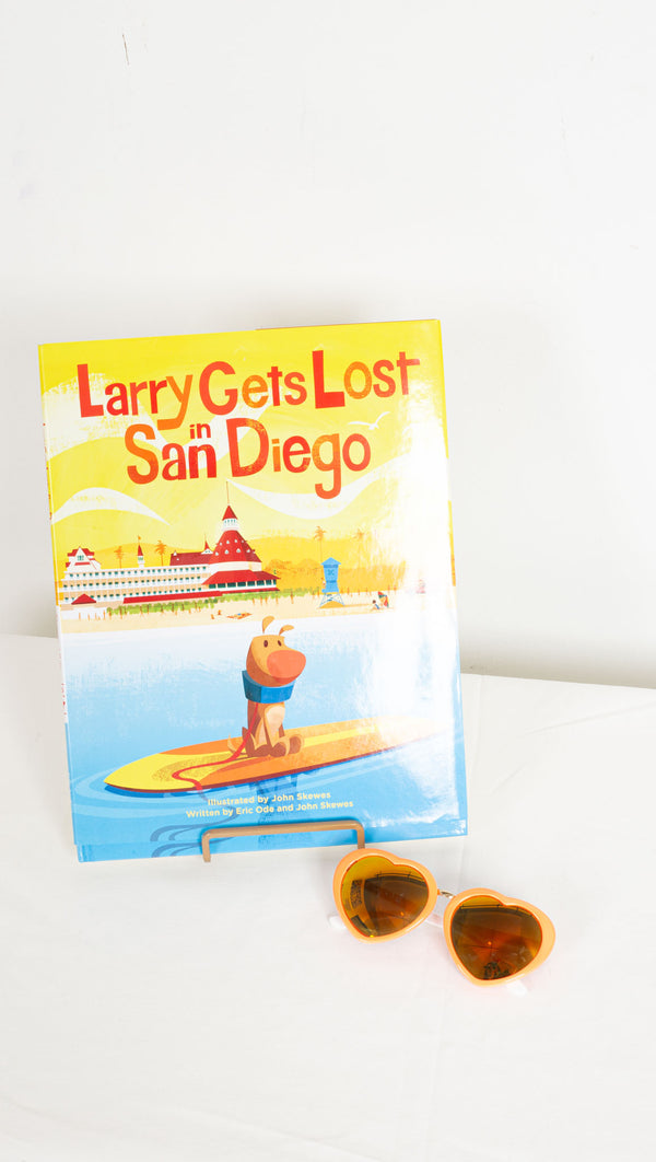 Larry Gets Lost in San Diego book