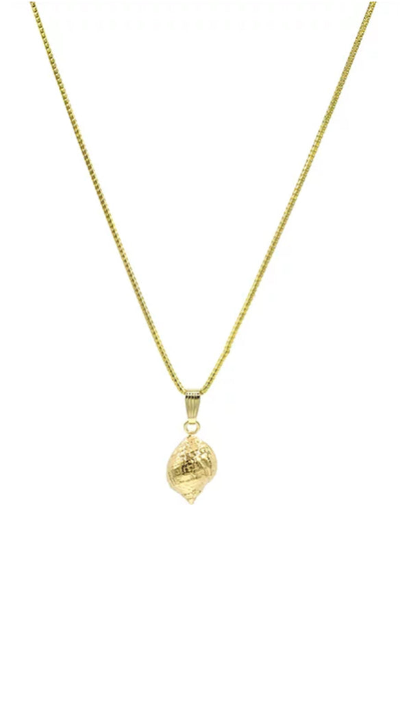 Paradigm Design gold necklace with large gold conch shell