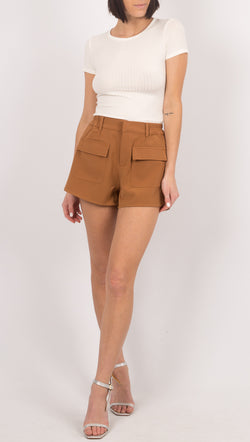 Winter Muse Brown Shorts