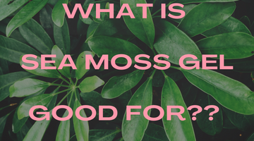 What is Sea Moss Good for???