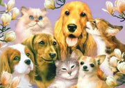 Dogs & Cats Laughing 01 Diamond Painting Kit - Diamond Painting Corner