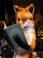 Fox with Glasses Reading - Diamond Painting Corner